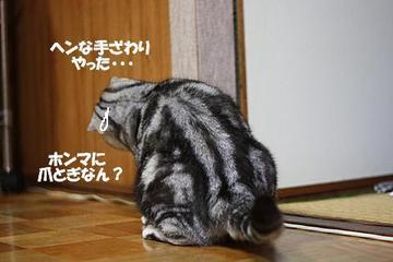Img_34432_3