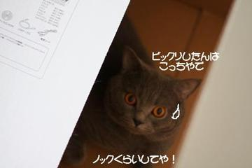 Img_61001_2